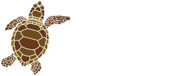 turtletime-logo-white