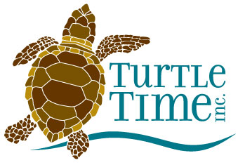 Turtle.Time.Logo